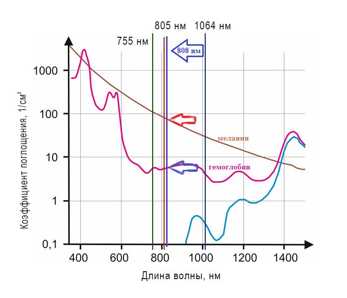 Коэффициенты поглощения хромофоров
